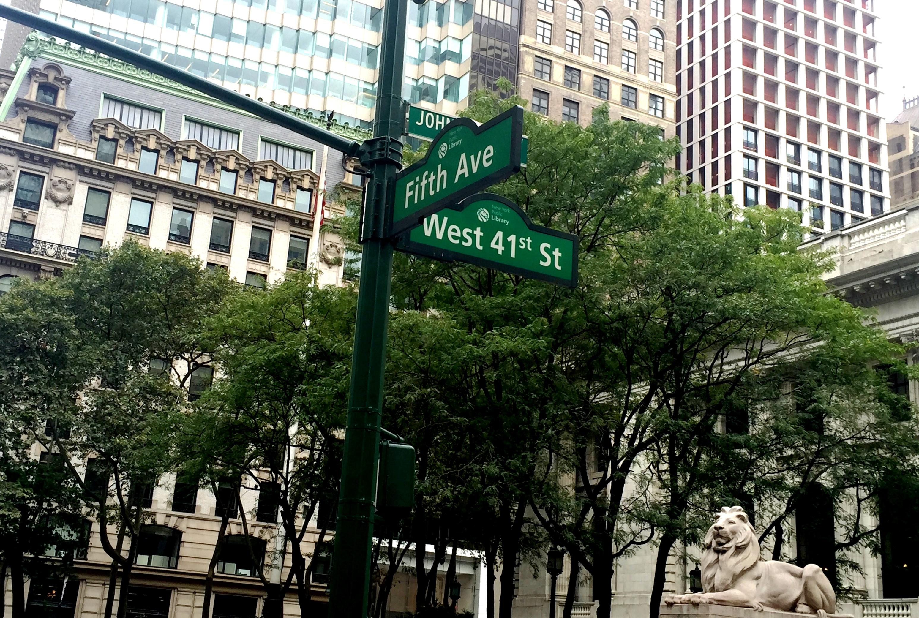 new york, giovana quaglio, times square, broadway, fifth avenue, quinta avenida, acho tendencia, fotos