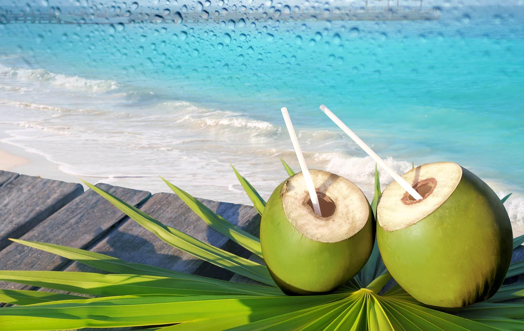agua de coco, coconut water, giovana quaglio