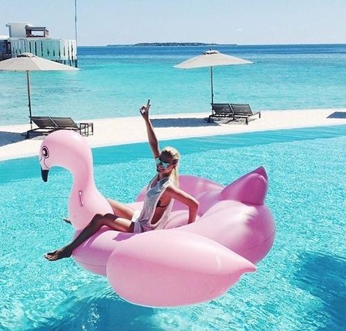 flamingo, acessorios, coisas, decoracao, roupas, pool float