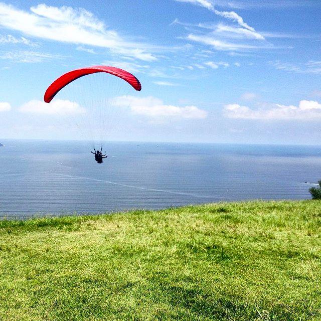 parapente, paraglide, voo, são vicente, santos, morro da asa delta, giovana quaglio, brasil